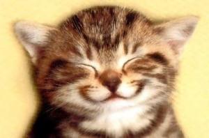 Så här ler jag när jag tänker på mina kompisar.