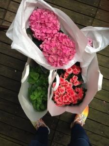 Hortseniorna döljer flera krukor, men här är några av inköpen från blomsteraffären idag.