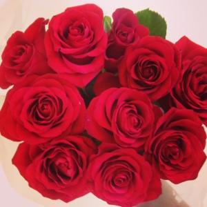 Tio långskaftade röda rosor. Bara sådär.